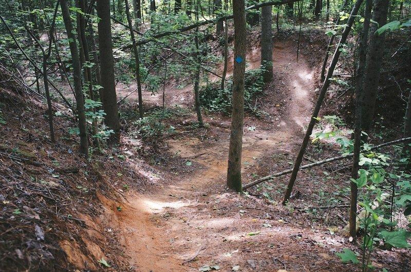 Awesome gully run on Fox Loop.