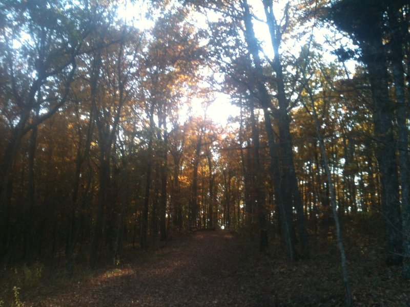 The Gravel Road Trail in the fall.