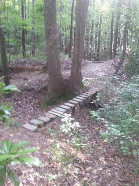 Skinny bridge over a 3 foot gully.