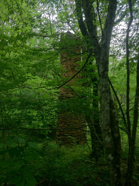 The remains of an old home on one of the Tsali Left Loop.