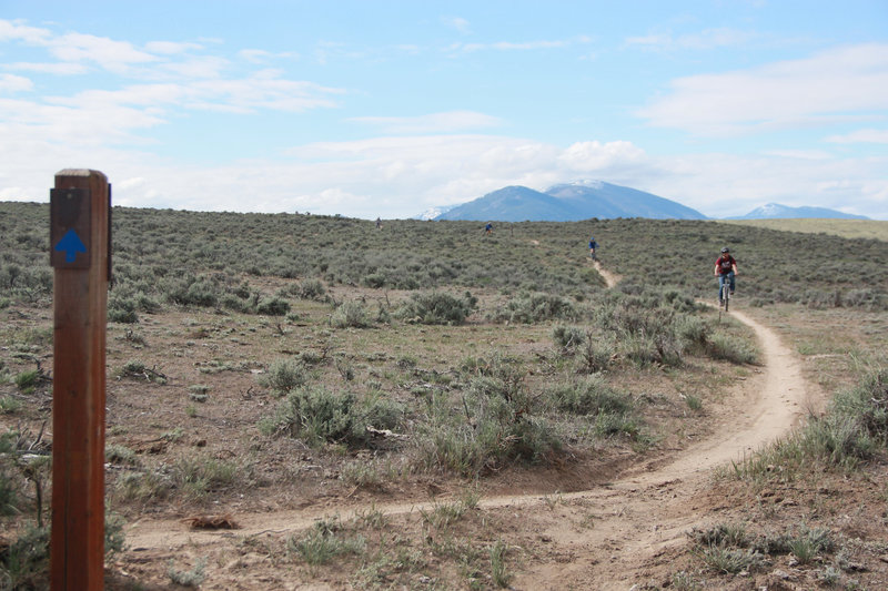 Lewis and Clark Trail. Sal Mountain in the background.