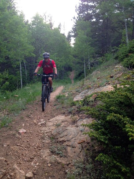 It's a fun, though less-traveled singletrack descent down FR 233.