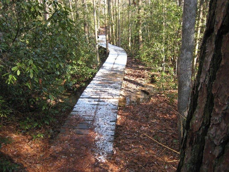 Bog bridge with snow on the Tashka Trail.