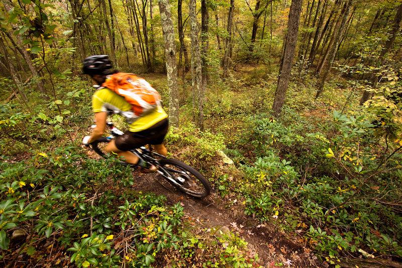 Rattling Creek Trail