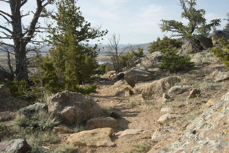 This trail has a great solid tread and no room to wander off in many places. It makes for more fun that way.