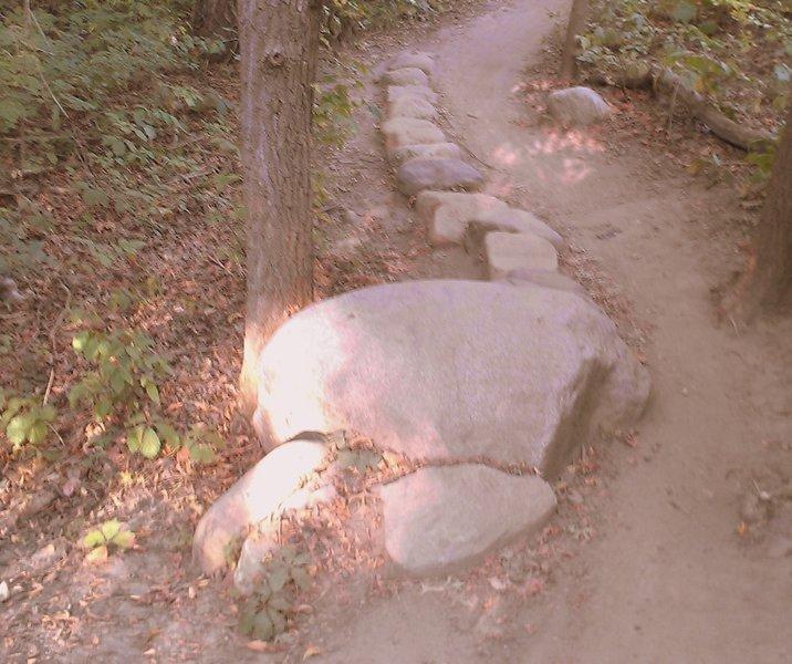Optional rock obstacle, west loop, Carver Lake MTB trail