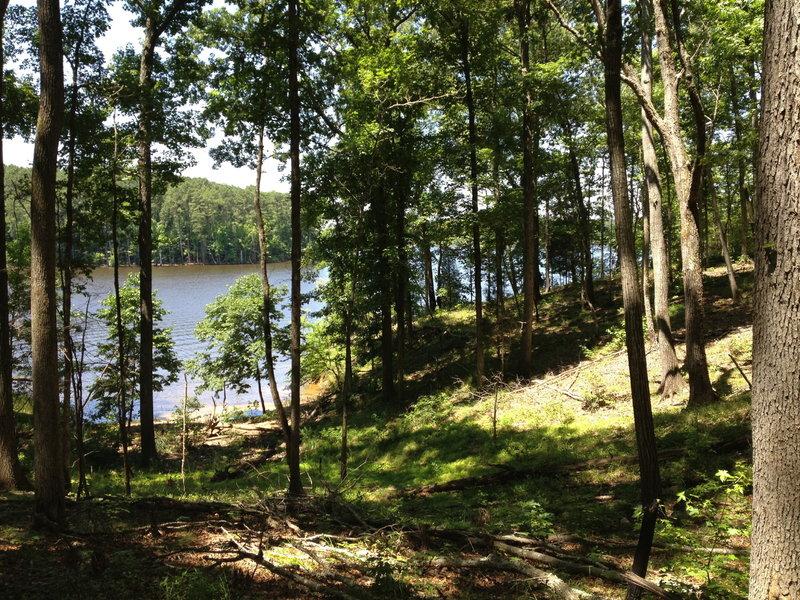 View of Falls lake