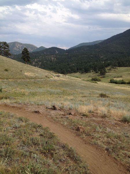 A nice open view halfway through the Walker Loop.
