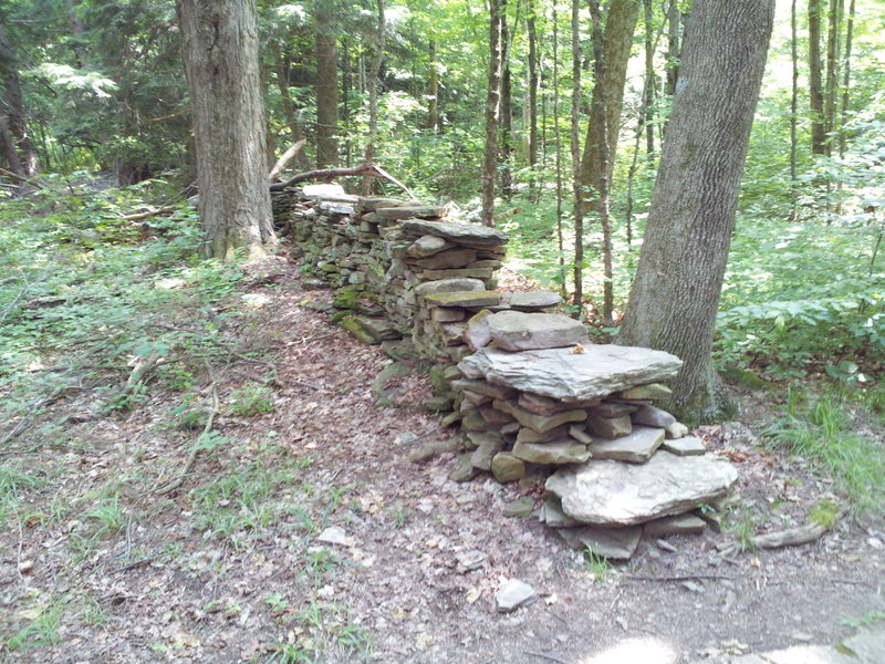 Rock wall along the trail