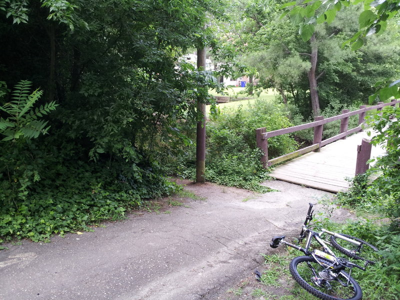 Take this left just before the bridge. Trail to the right is blocked by downed trees.