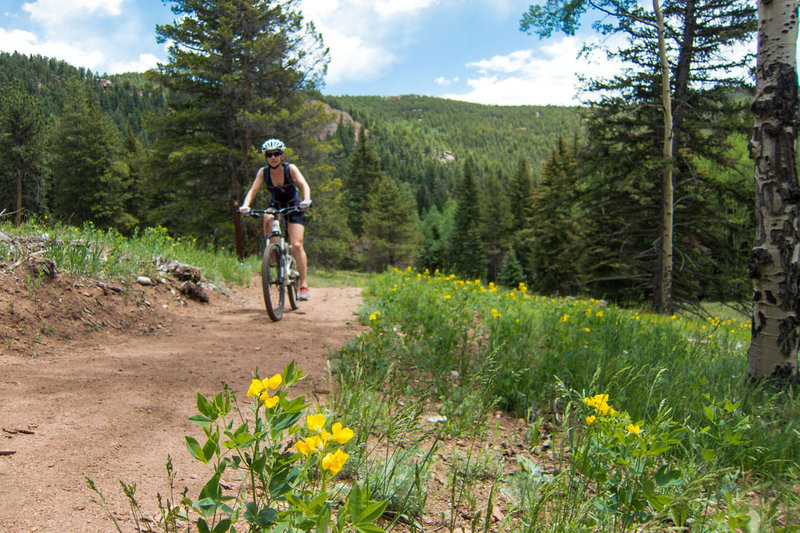 Wide trails make for easy climbing and passing. Tons of flowers out in the meadows.