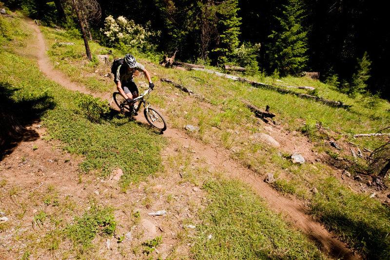 The eastern end of the Umpqua Trail near Lemolo Lake has a very alpine setting.