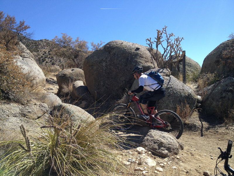 Lance weaving through rocks on the way back to the parking area