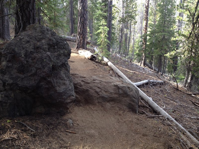 One big rock in the trail
