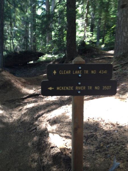 Options to bike around Clear Lake.