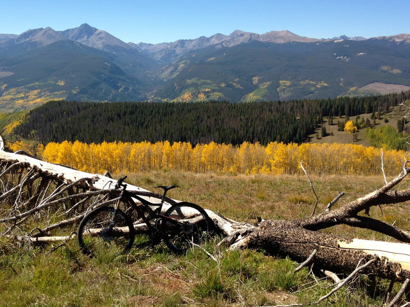 The top of Cougar Ridge is mellow... and beautiful!