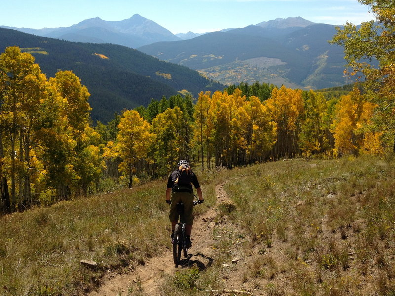 It's like a powder day on your bike!  Superb trail in superb aspens.