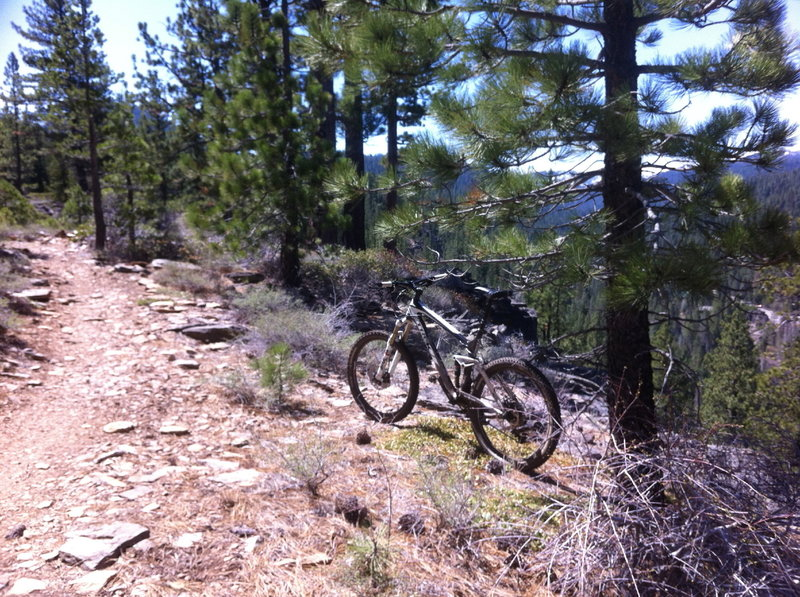 SawTooth. A fun little trail, a local favorite.
