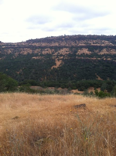 View of the Gorge from Guardians Trail