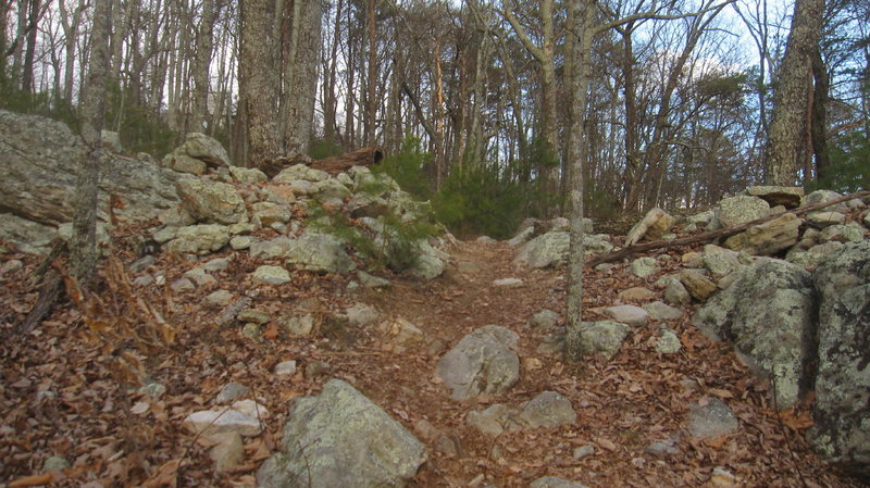 Civil War breastworks near the cell towers on Dug Gap.