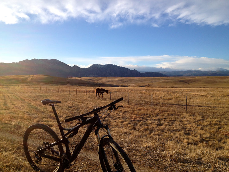 Open plains, horses, and cows combine with smooth singletrack to make this section of trail mellow and peaceful.