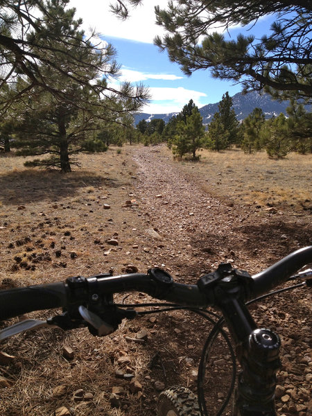 Loose rocks on this section of trail, near the southernmost section of the Marshall Mesa trail system.