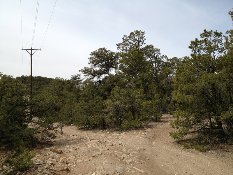 The less traveled but vital turn off to cut the corner of the power line roads.