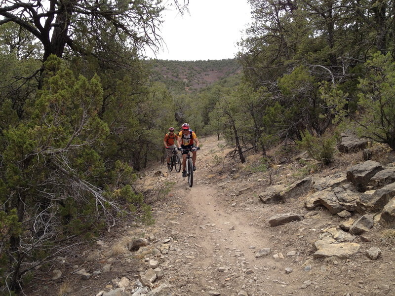 Riders on Delbert's Trail passing approaching the intersection with Chamisoso from the opposite direction.