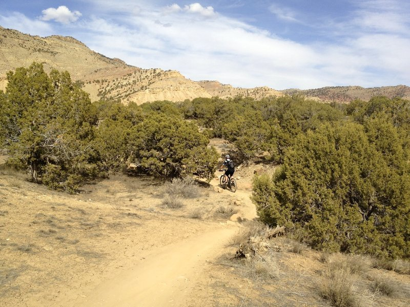 Some of the hills are a little steeper at the top of Prime Cut, but it's still easy.