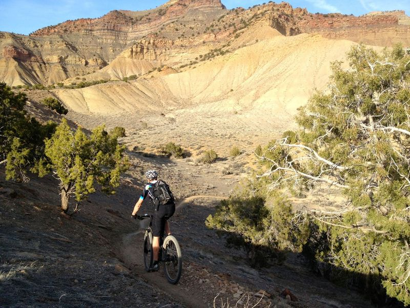 Some ups and downs along the Frontside trail