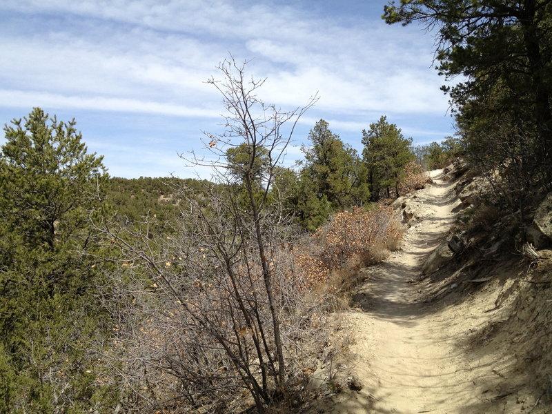 Tunnel Canyon Trail climbing along the hillside.