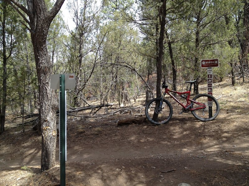 Trail junction between the West Ridge and Otero Canyon Trails.