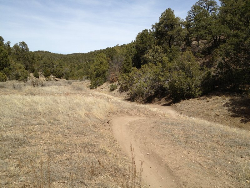 Flowing single track near the bottom of Otero Canyon.
