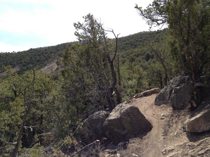 Tight spot between rocks.