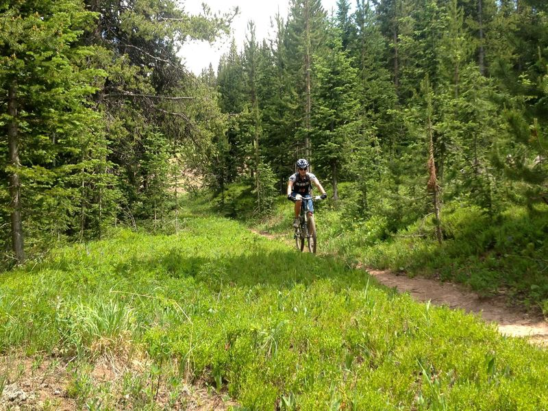 Smooth, pretty flat, easy riding on Lucy's Loop