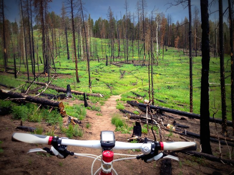 Riding through the burn is actually a cool experience.