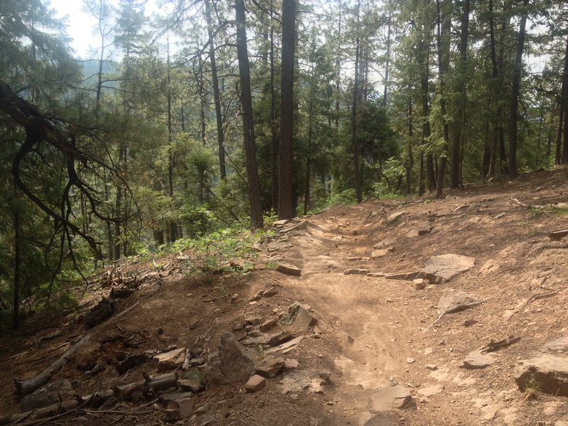 Trail is a bit rocky on the switchbacks but not too bad