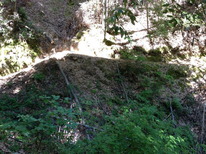 Exposed Edge ST Typical on trail