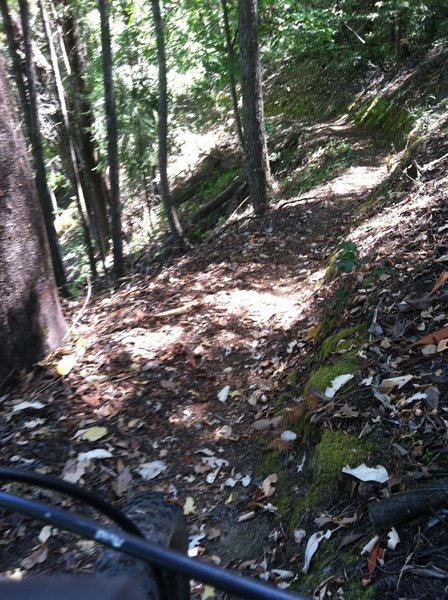 Trail is Sketchy in this area
