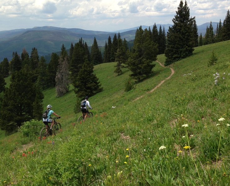 """Proving that the """"Grand Traverse"""" trail is aptly named."""