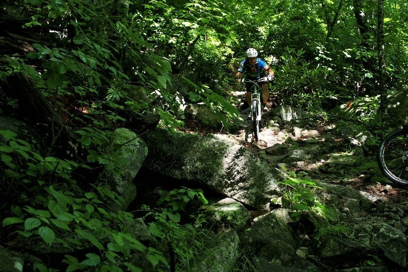 Riding dow some boulders on Pilot.