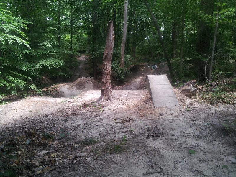 Some jumps to play on.