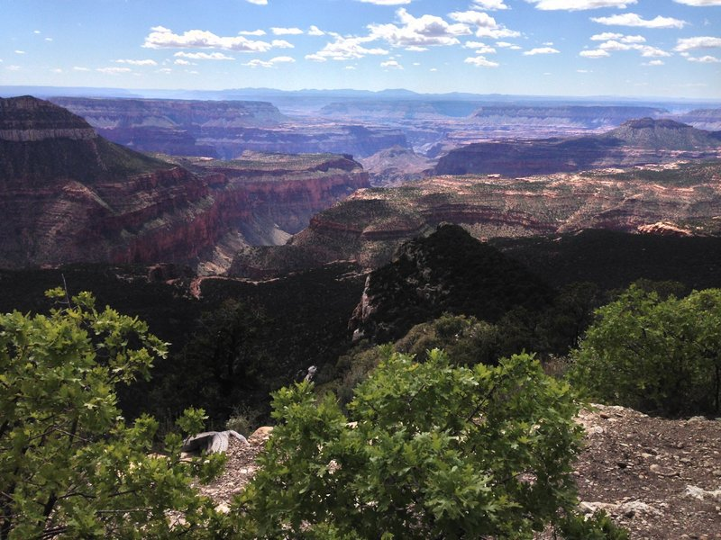 An overlook that peers into the Grand Canyon