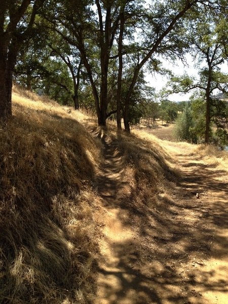End of Singletrack, easy to miss on return