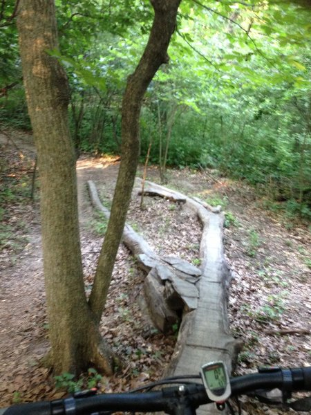 Fun feature located along trail.