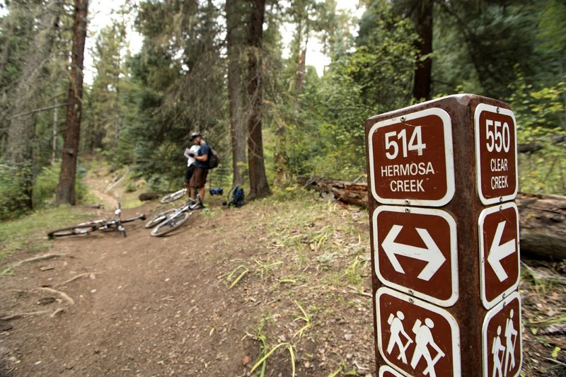 Stopping to confirm coordinates along the Hermosa Creek Trail.