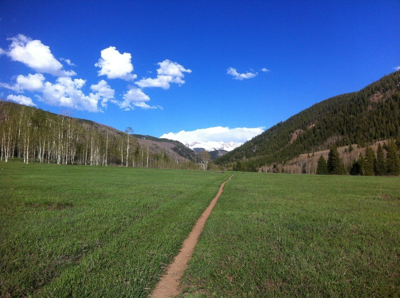 Looking towards Thimble Rock and the Williams Mountains while heading east on the North Hunter Creek Trail.