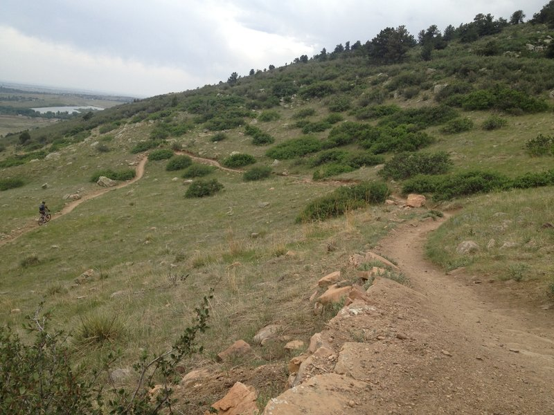 The view south from near the top of Maxwell Trail