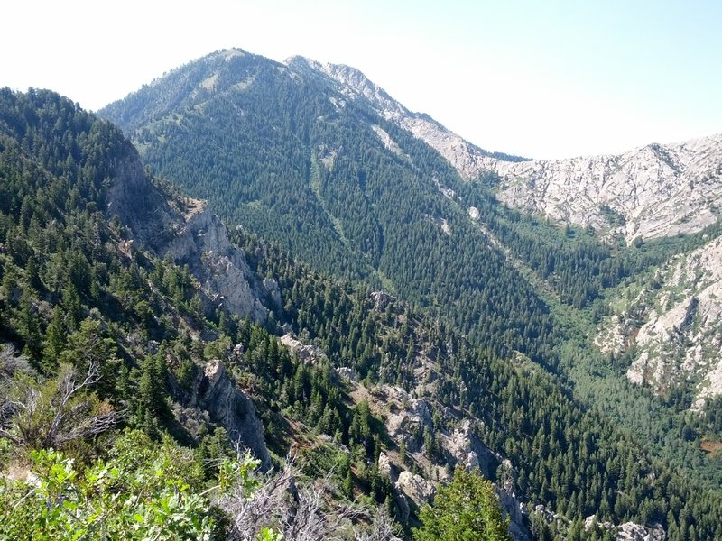 The back of Mt. Allen from the Coldwater Canyon Overlook.