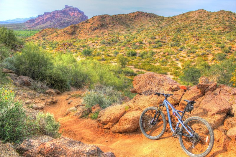 Saddle Trail descent towards Saguaro Trail